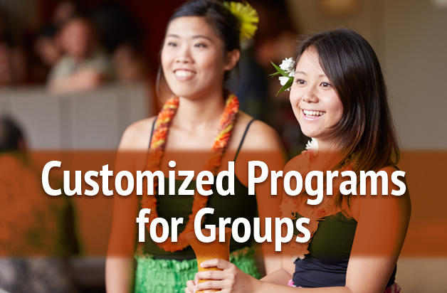 Customized Programs for Groups